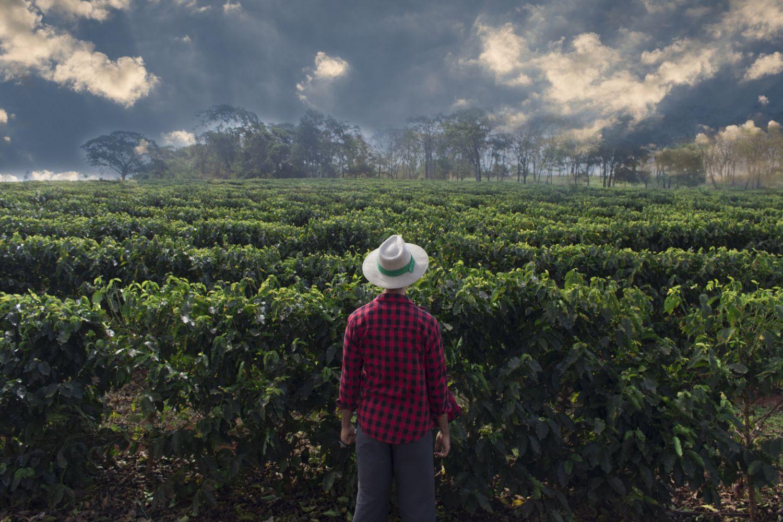 Ein Kaffeebauer steht vor seiner Plantage. Zahlreiche Kaffeesorten werden weltweit angebaut