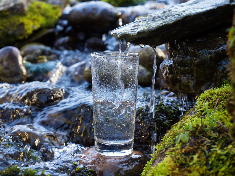 Aus einer Quelle läuft frisches Wasser in ein Glas. Gesundes Mineralwasser sollte Bestandteil einer ausgewogenen Ernährung sein